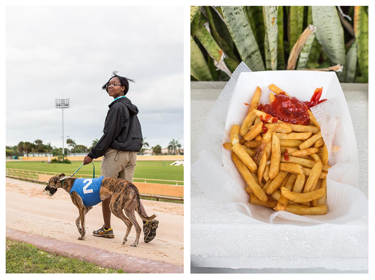 35_Greyhound Race_03